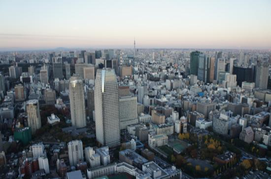 Tokyo tower 23