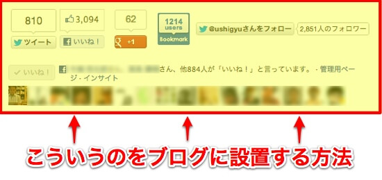Blog sns share button title