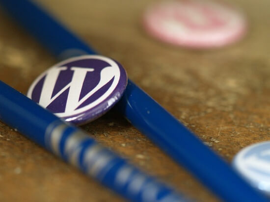 How to use wordpress plugins title
