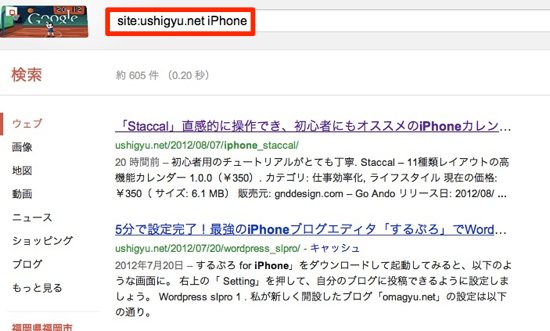 Safari customsearch 13
