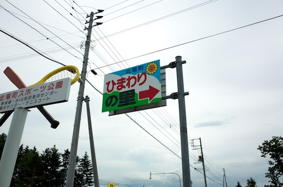 Hokuryucho himawari 5