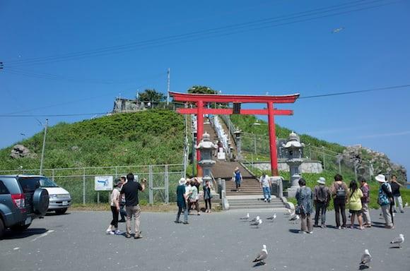 Kabushima 1
