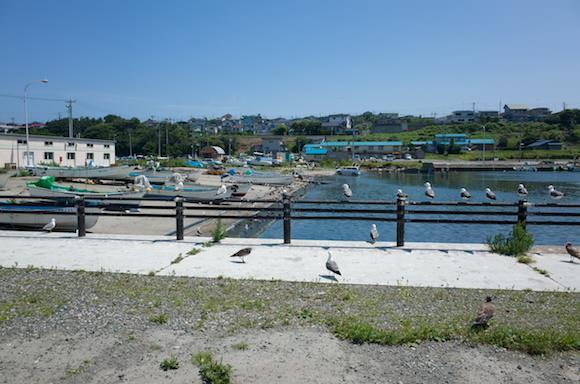 Kabushima 5