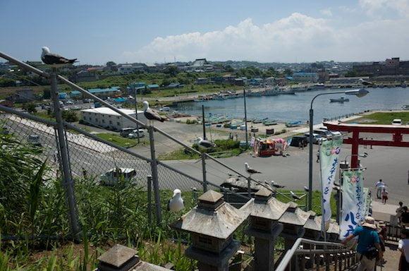 Kabushima 8