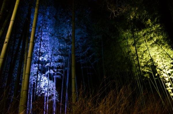 Arashiyama hanatoro 4