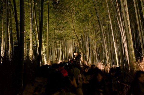 Arashiyama hanatoro 5