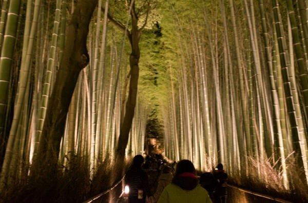 Arashiyama hanatoro 7