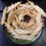 福岡市西区「大地のうどん」丼を覆うごぼ天に、麺もダシも抜群に美味い!