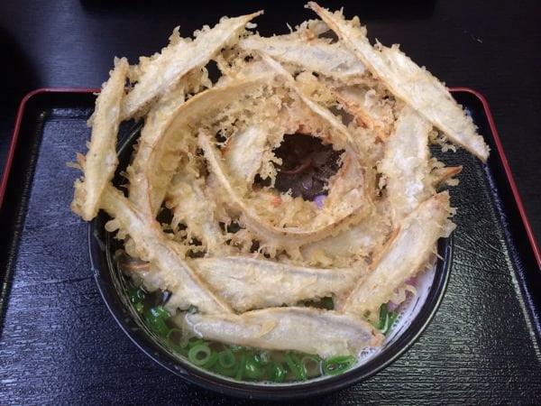 Daichinoudon 8