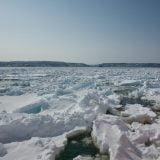 網走の観光砕氷船「おーろら」でオホーツク海の流氷を見てきた。一生に一度は見ておくべき風景。