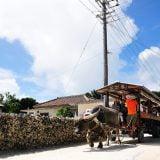 沖縄県の主な離島に移動する際の交通手段まとめ(フェリー・飛行機)