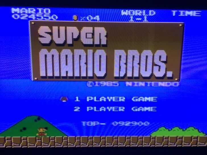 Supermario bros fatal case title