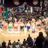 福岡開催の大相撲十一月場所を見に行ってきた。テレビでは伝わらない力士たちの迫力っ…!