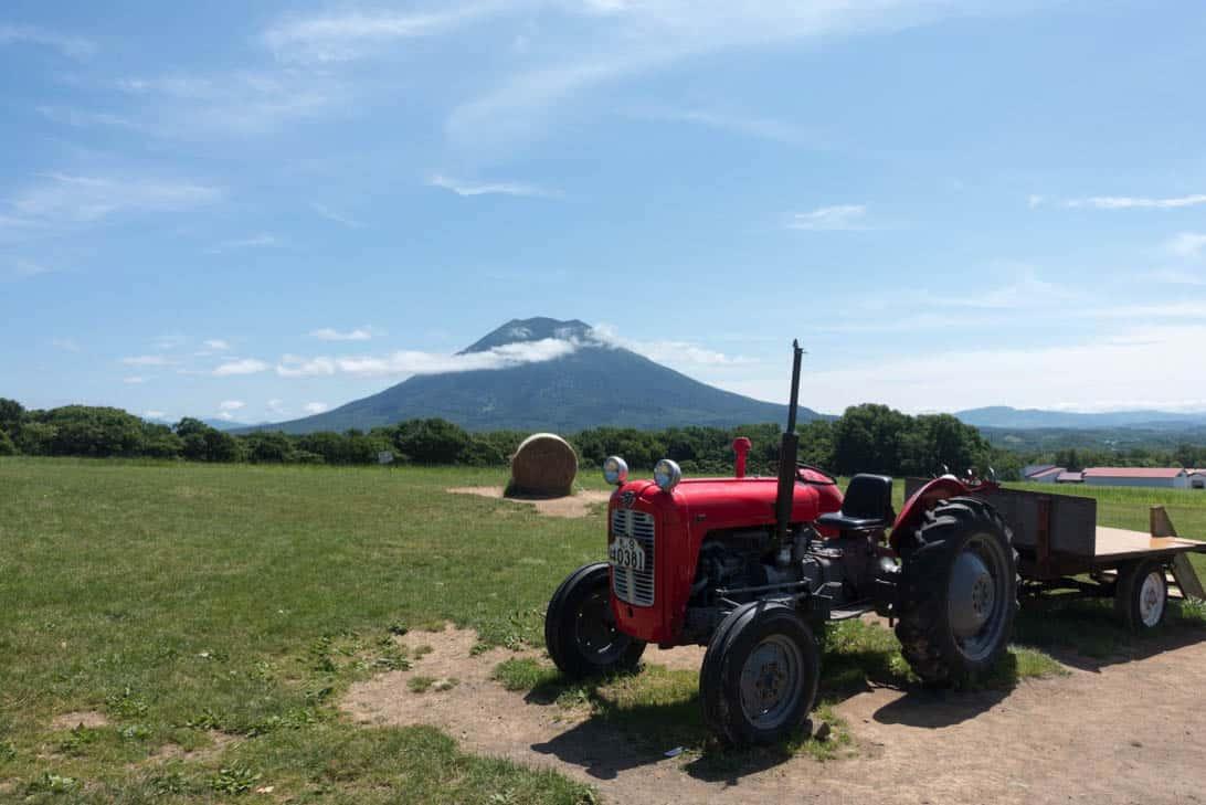 Takahashi farm 7