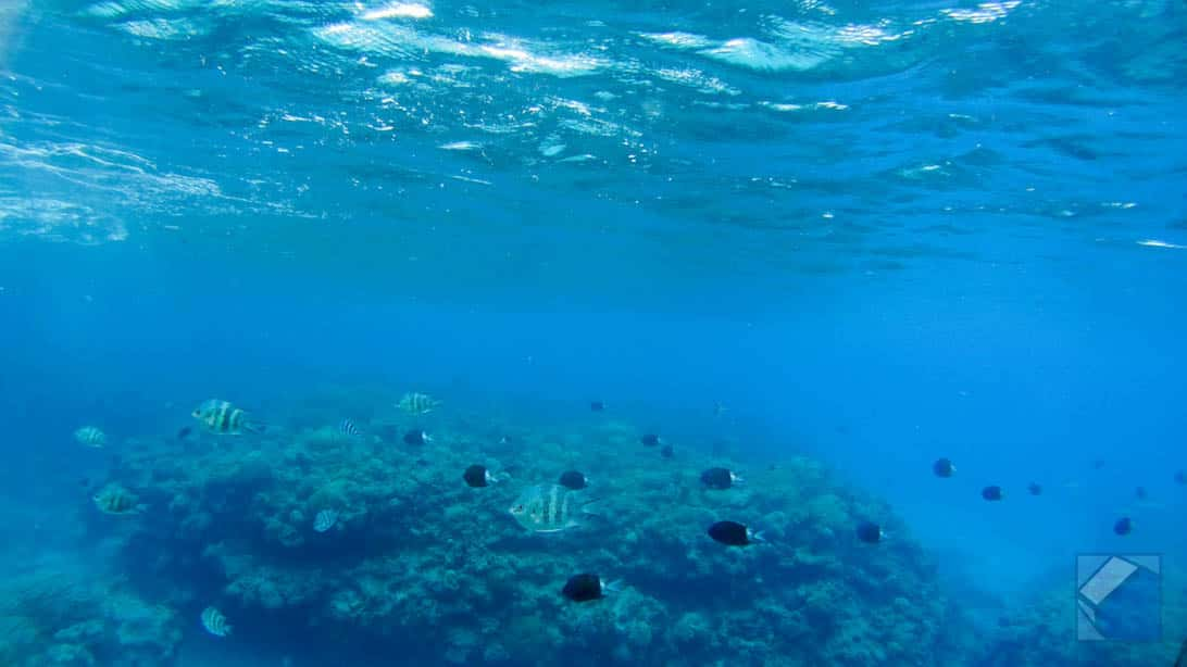 Zamami island sea 23