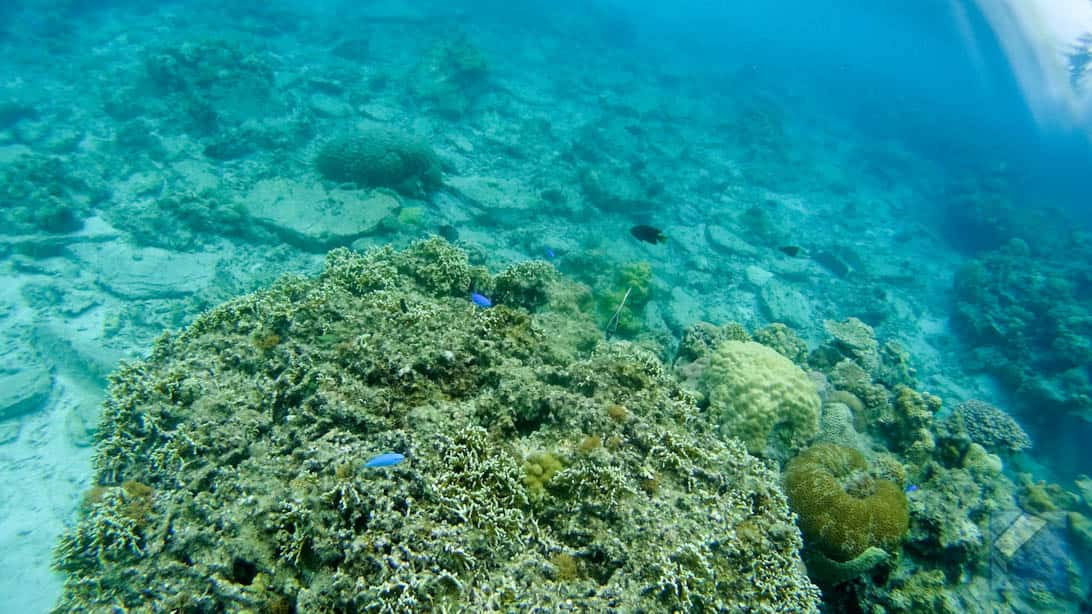 Zamami island sea 24