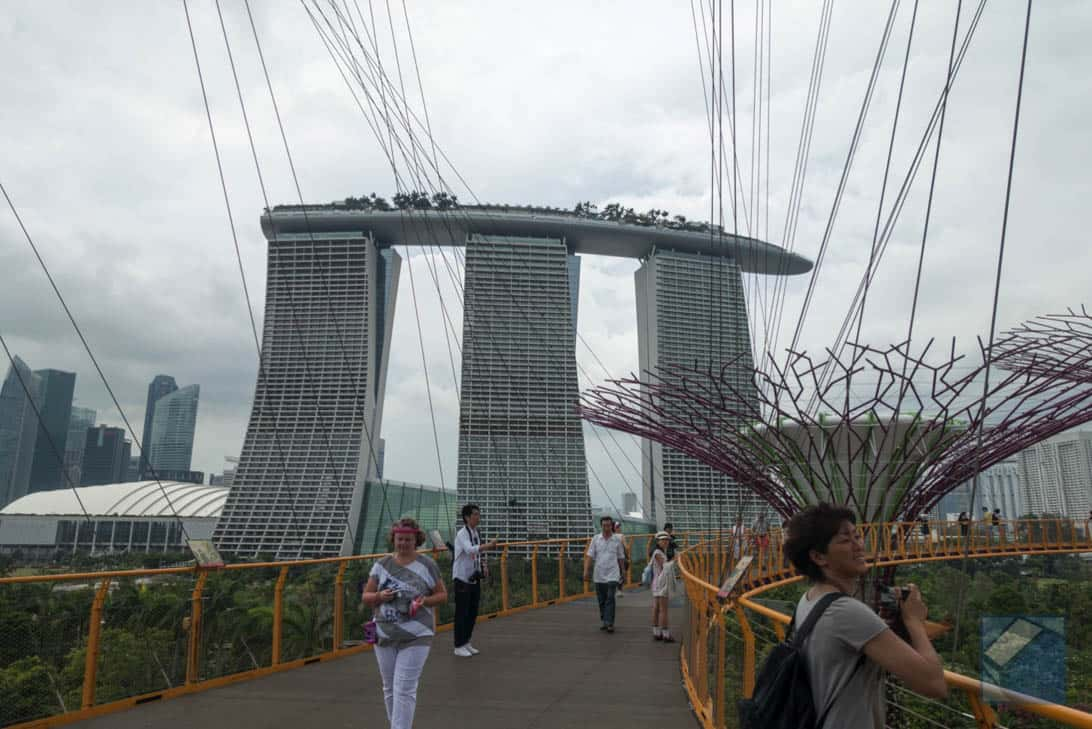 Gardens by the bay 11