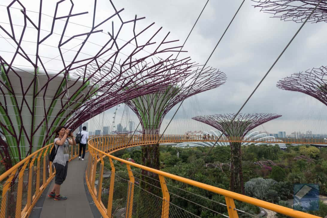 Gardens by the bay 12