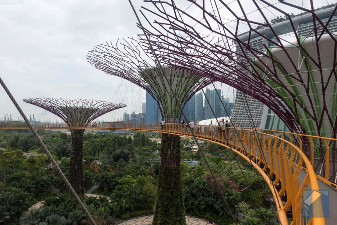 Gardens by the bay 13