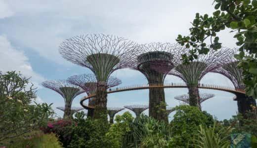 シンガポールの「ガーデンズ・バイ・ザ・ベイ」まるでファンタジーの世界に来たような不思議な光景。