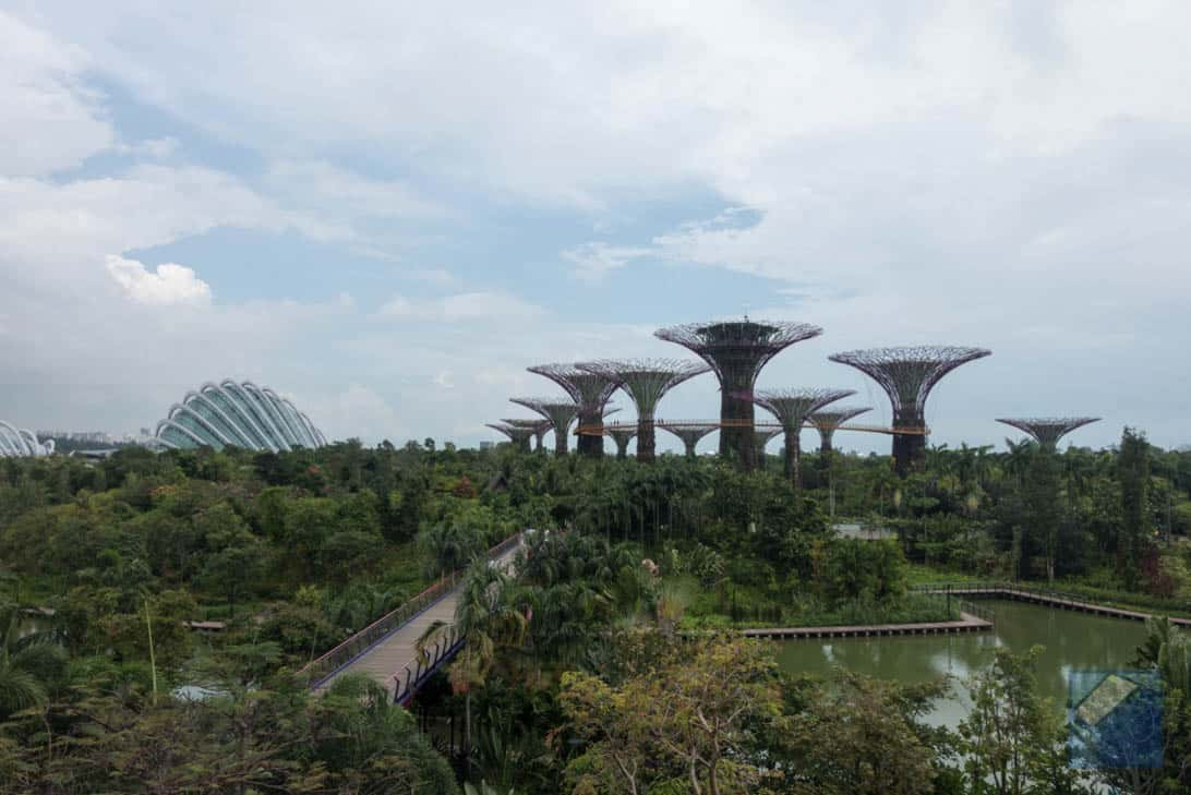 Gardens by the bay 19