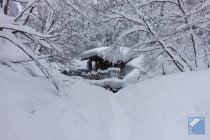 akita-nyutoonsen-yumeguri-32.jpg