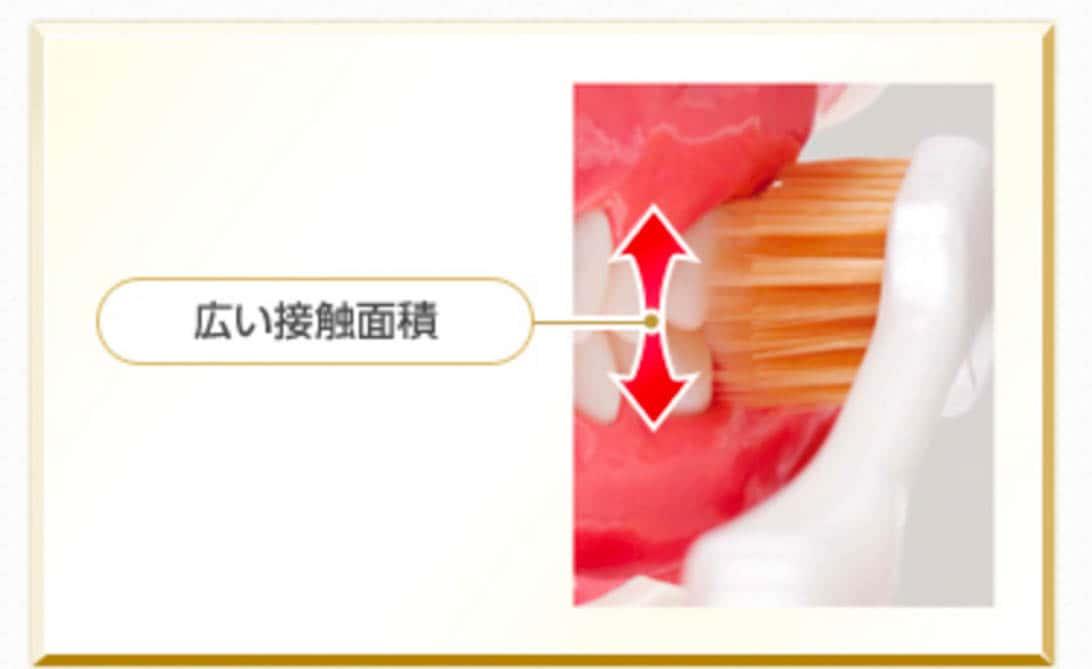 Ebisu toothbrush 7
