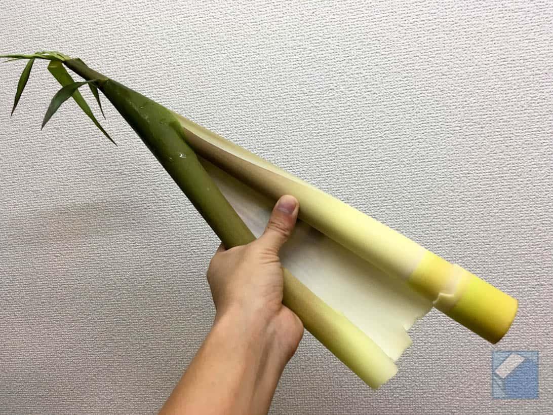 Daimyo takenoko mishima 4