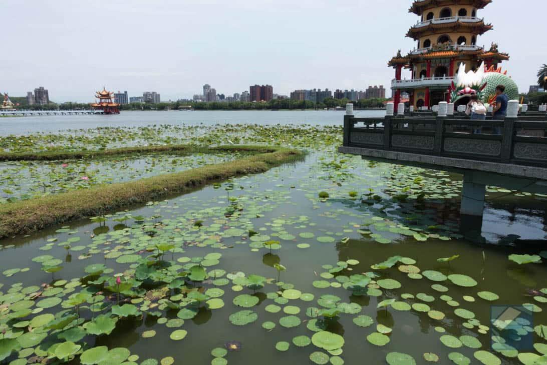Lotus lake dragon and tiger pagodas 8
