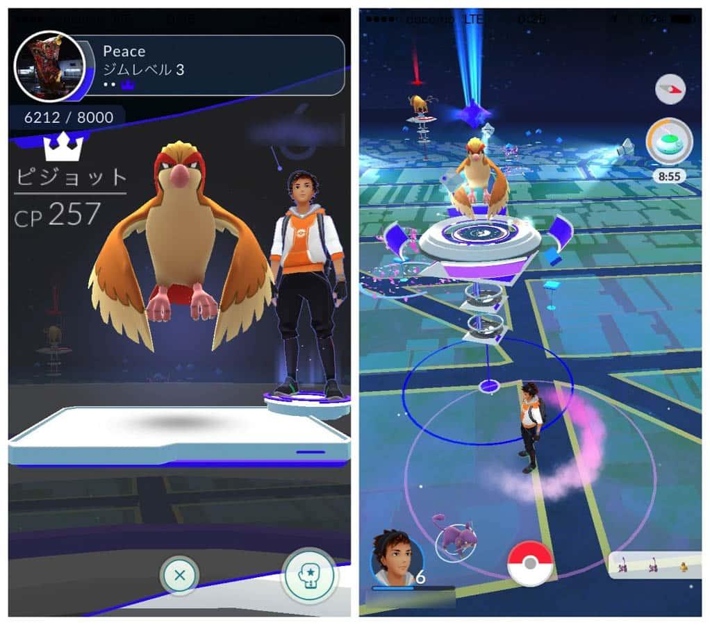 Pokemongo gym battle 12