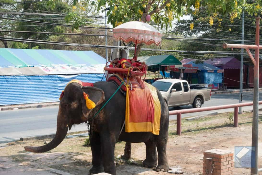 Ayutthaya ruins thailand 11