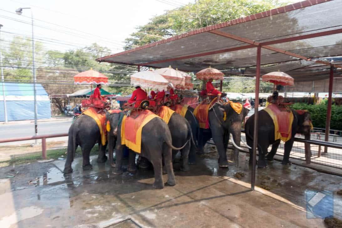 Ayutthaya ruins thailand 12