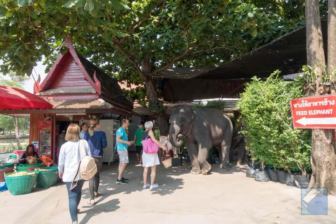 Ayutthaya ruins thailand 3