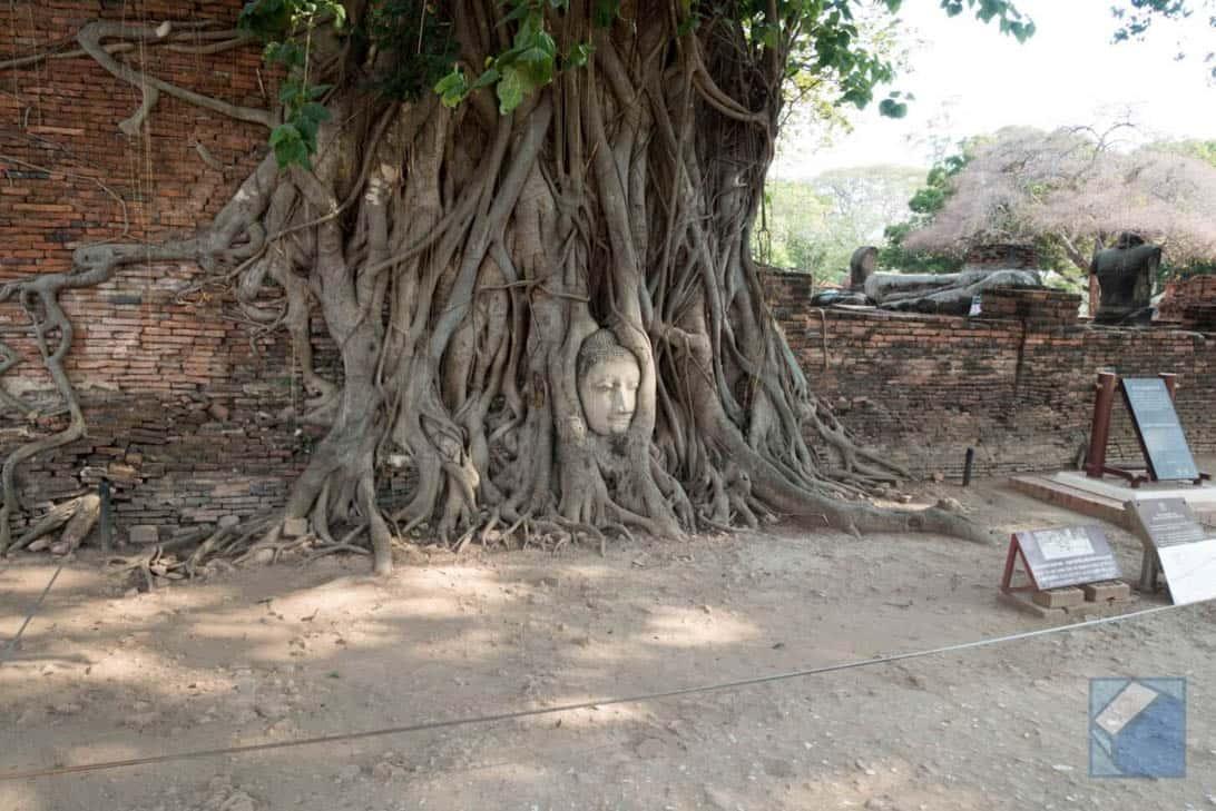 Ayutthaya ruins thailand 39