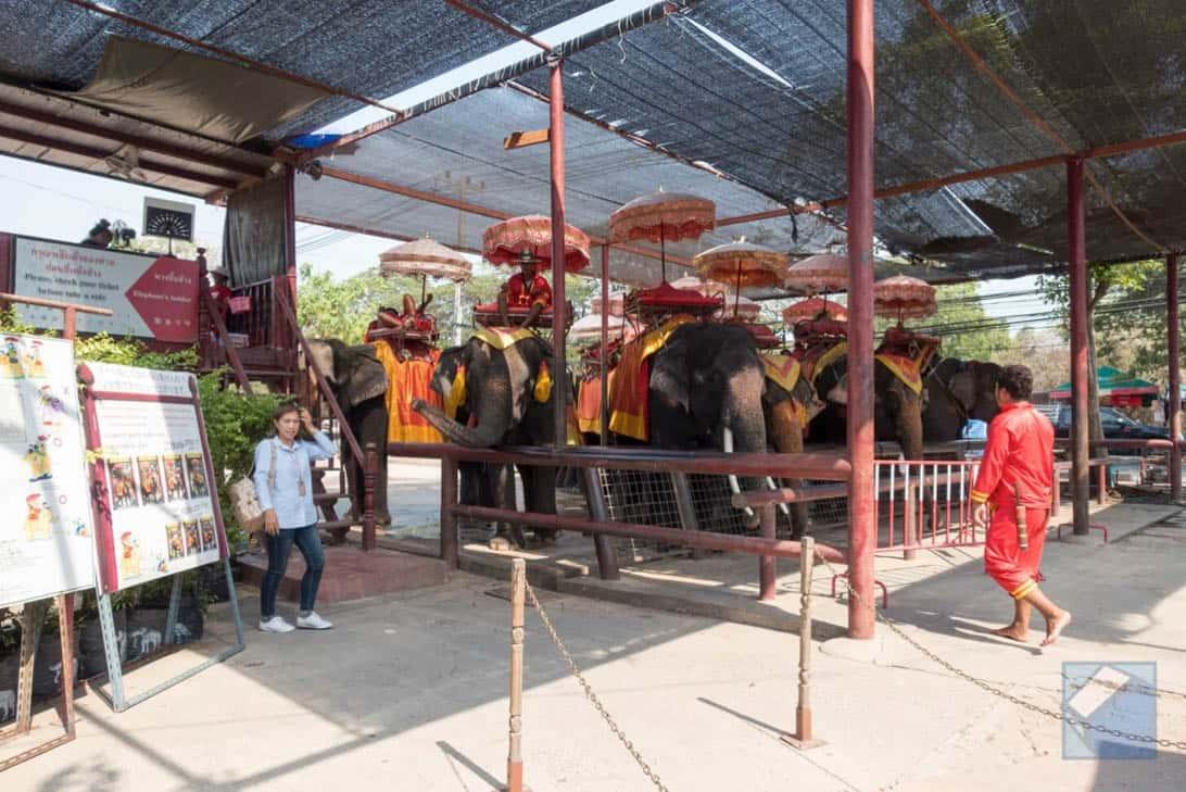 Ayutthaya ruins thailand 7