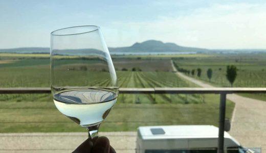 チェコ有数のワイナリー・ソンベルク(SONBERK)の香り華やかな白ワインが最高だった