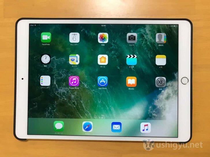 iPad Pro AndMeshケースを装着