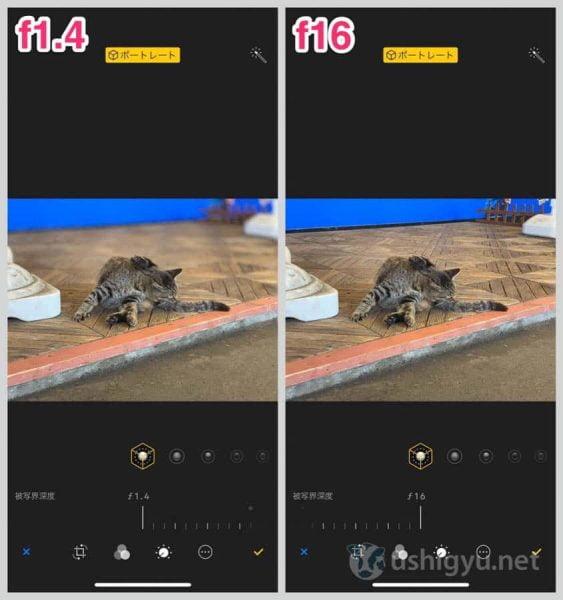 iPhone XSやXRは背景のボケ方をあとから調整できる