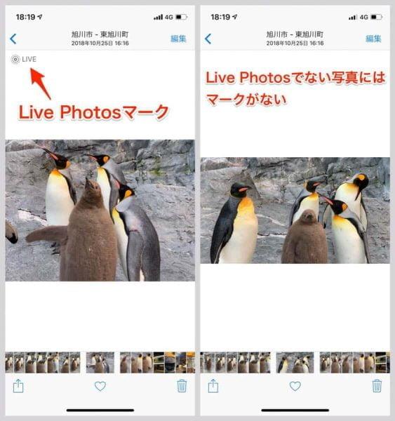 Live Photosで撮った写真はLIVEの文字とマークがつく