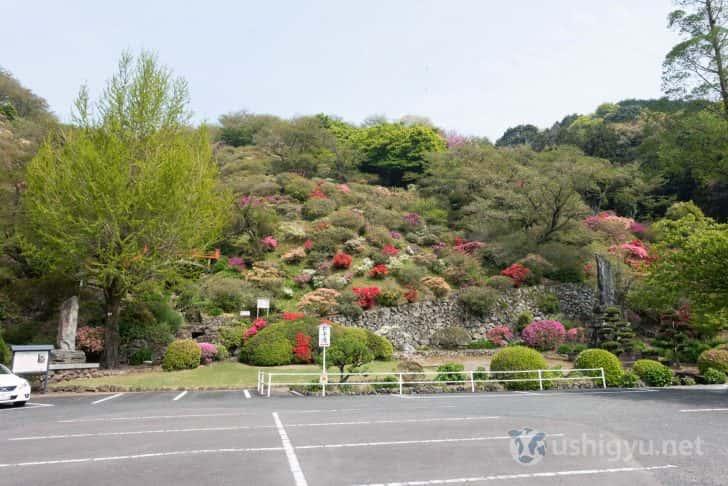 駐車場横にはつつじの咲く東山公園