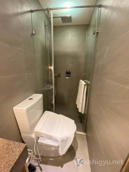 バスルーム兼トイレもやたら細長い