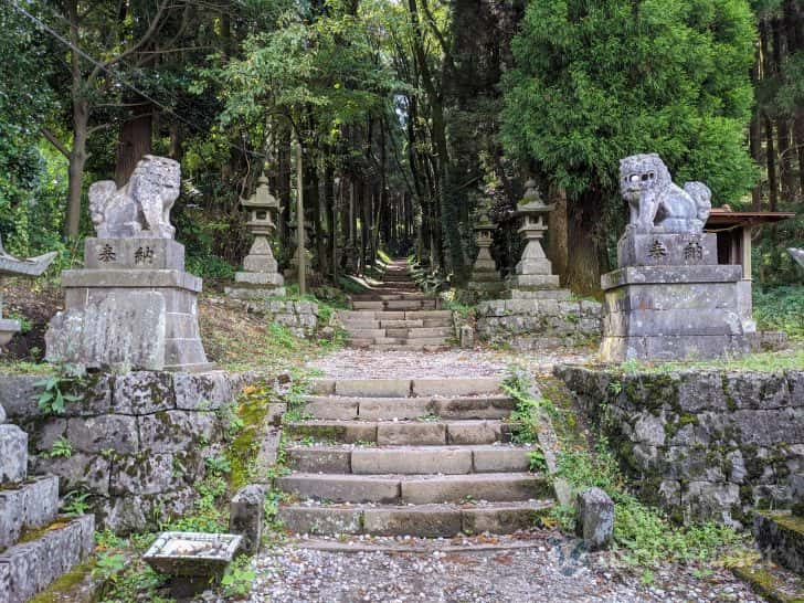 狛犬の間を通り、灯籠と鬱蒼とした木々がならぶ参道へ
