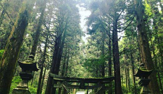 熊本・南阿蘇の高森町にある「上色見熊野座神社」は、幻想的で荘厳な雰囲気の穴場撮影スポット