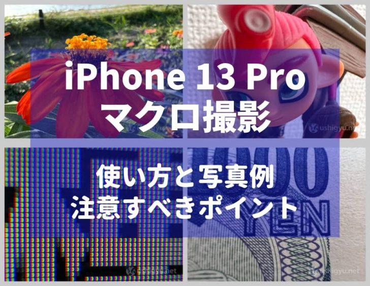 iPhone 13 Proのマクロ撮影はめちゃ近付いて撮れる。撮影方法と作例、注意すべきポイントを解説