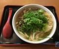 「因幡うどん」博多らしいやわ麺と風味豊かなダシ、かしわにぎりと一緒に食べて幸せ。